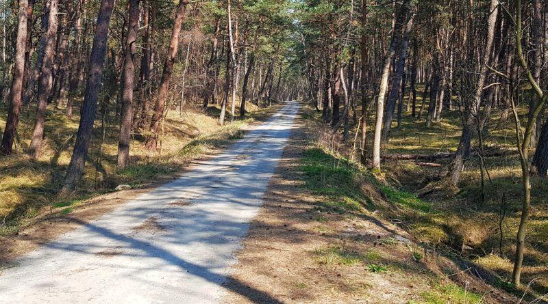 trasa rowerowa w sztutowie