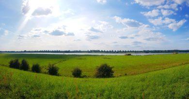 wał w Mikoszewie