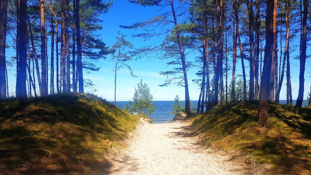 otwarte plaże