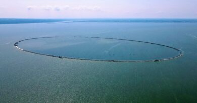 Wyspa Estyjska na Zalewie Wiślanym